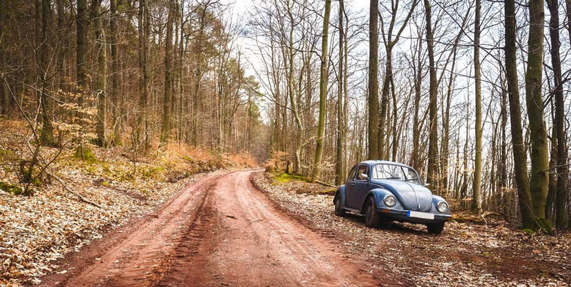 Volkswagon beetle on the side of a dirt road