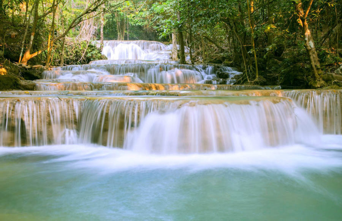 Waterfall In A Tropical Forest Wallpaper Mural