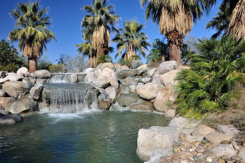 Waterfall-Surrounded-By-Palm-Trees-Wall-Mural.jpg