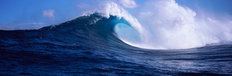 Waves Of Maui Mural Wallpaper