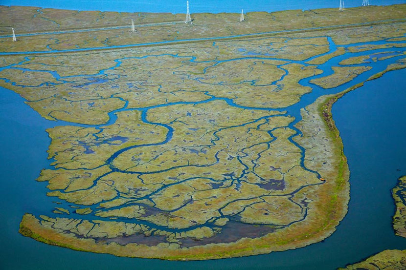 Westpoint Slough and Greco Island Wall Mural