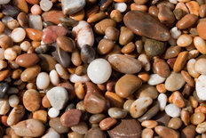 Wet Pebbles Mural Wallpaper