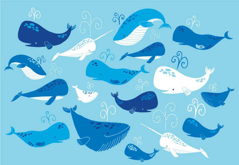 Whale Of A Tale Wallpaper Mural