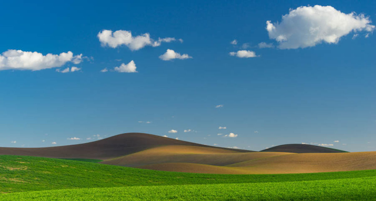 Wheat Fields of the Palouse Mural Wallpaper