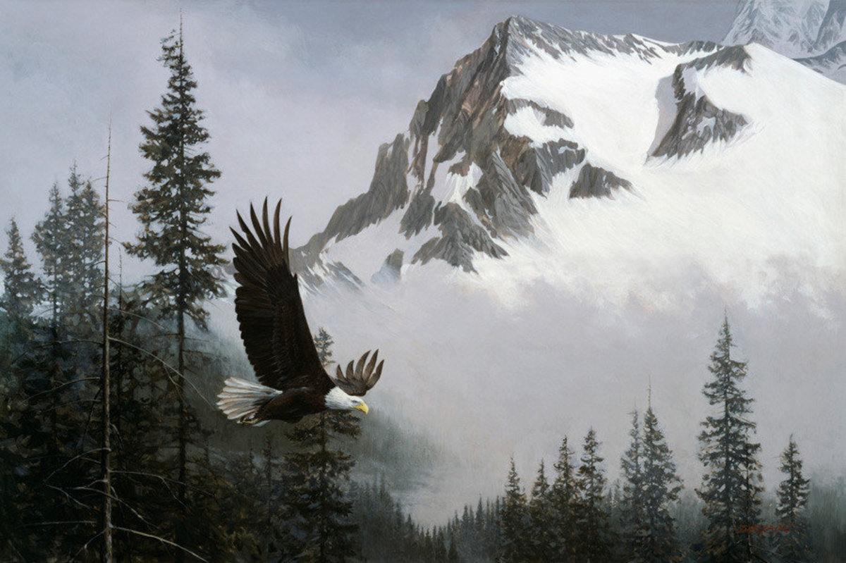 Where Eagles Soar Mural Wallpaper