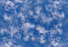 Whispy Clouds Wall Mural