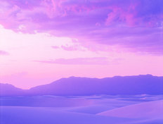 White Sands Lavender Evening Wall Mural