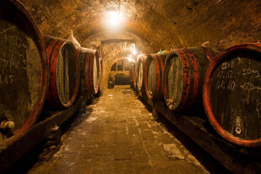 Wine Barrels and Bottles In A Traditional Cellar Wall Mural