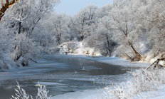 Winter's Day On The River Zai Mural Wallpaper