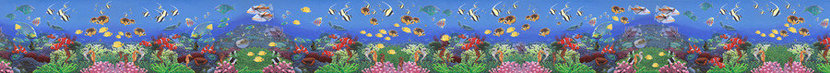 Wonders Of The Sea - Panoramic Wall Mural