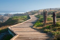 Wooden Boardwalk On 17 Mile Drive Wall Mural
