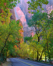 Zion Canyon, Zion National Park, UT Wallpaper Mural